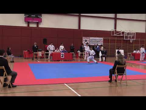 JDN Kata y Kumite Cadete y Junior 201018 Video 3