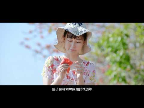 林初埤木棉花季宣傳影片