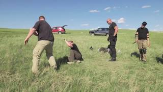 KC James  Spends a day with Punk band & Las Vegas Bodyguard for Krav Maga - Video Youtube