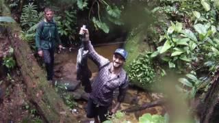 GUYANE Fishing / Wolf Fish / Aïmara