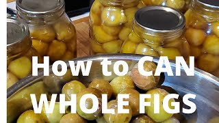 AFRAID Of Canning?  Here Are A FEW Tips On WATER BATH CANNING