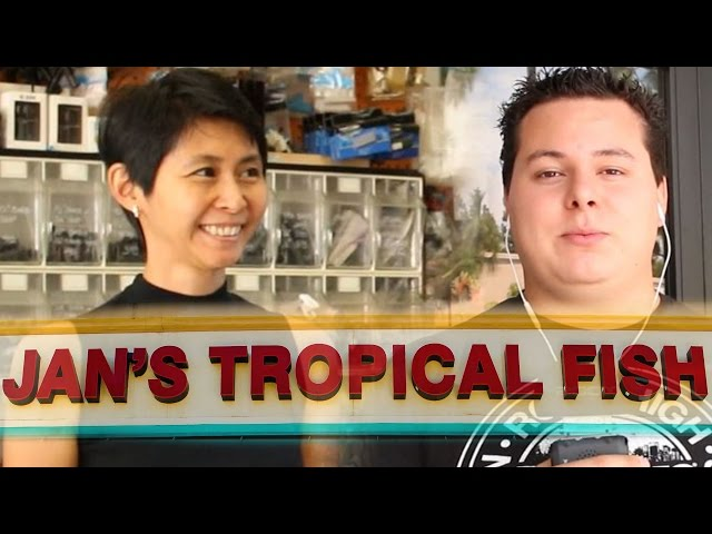 Tropical Fish Store Tours: Jan's Tropical Fish