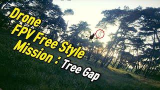 FPV 프리스타일 미션 in 경주 | 나뭇가지 Gap