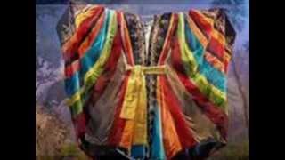 Dolly Parton Coat Of Many Colors