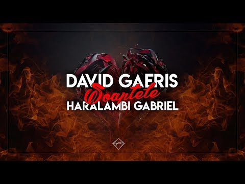 David Gaeris & Haralambi Gabriel – Soaptele Video