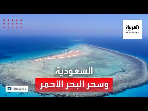 العرب اليوم - شاهد: صور ساحرة من مشروع البحر الأحمر في السعودية