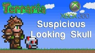 Terraria Xbox - Suspicious Skull [142]