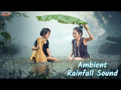 Ambient Rain Fall Sounds For A Good Sleep