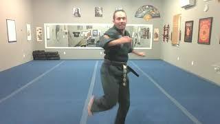 Kick Trainer