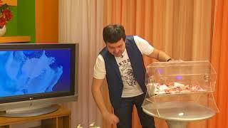 """Розыгрыш от компании """"ДЕП"""" - октябрь 2017"""