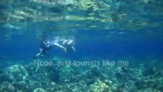 preview picture of video 'Ka'anapali Snorkeling Maui Hawaii,  Part 1 -- Saddle Wrasse galore'
