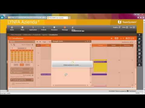 Videopillole LYNFA Azienda 12 2 Strumento di collaborazione all'interno dell'azienda