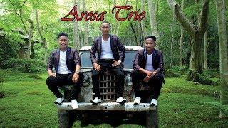 Download lagu Dang Sarupa Au Tu Mantan Hallet Mi Arosa Trio Mp3