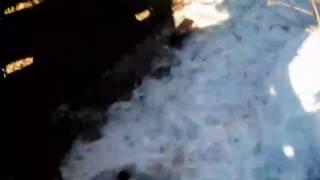 Егор борников и даниил шабалин и ручеЙ