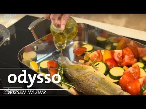 Ernährungskompass von Bas Kast | SWR odysso
