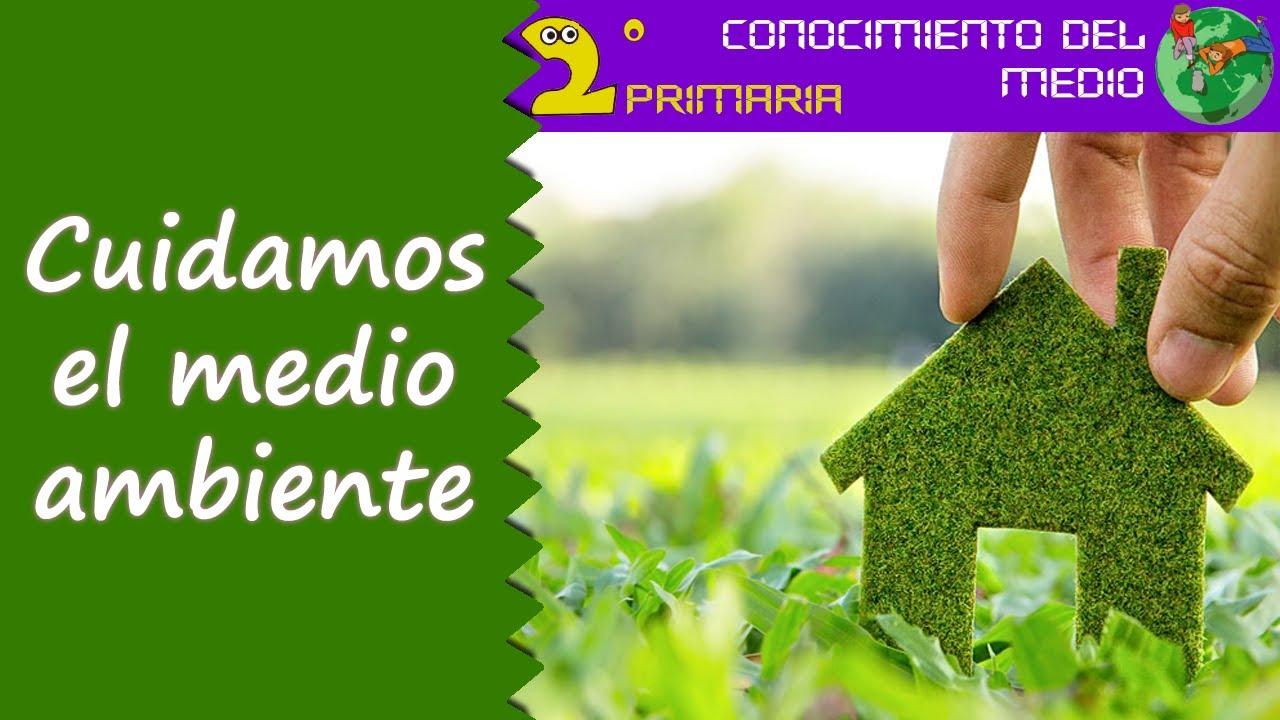 Cono, 2º Primaria. Tema 8. Cuidamos el medio ambiente