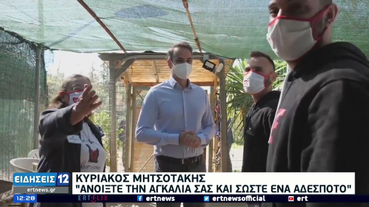 Κ.Μητσοτάκης | Επίσκεψη σε καταφύγιο αδέσποτων ζώων | 04/04/2021 | ΕΡΤ