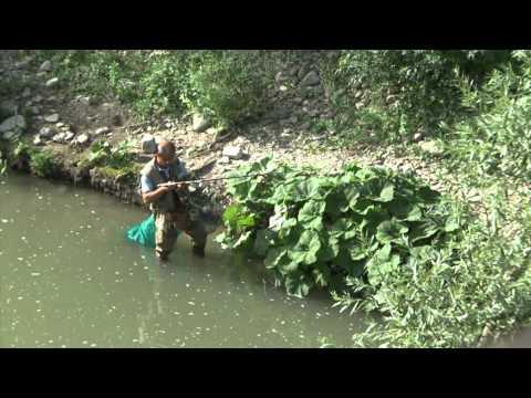 Krasnodar soddisfa per pesca