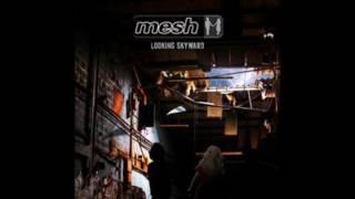 Mesh -  the fixer.2016