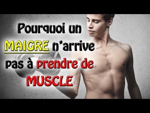 Les muscles pronatsii les pinceaux