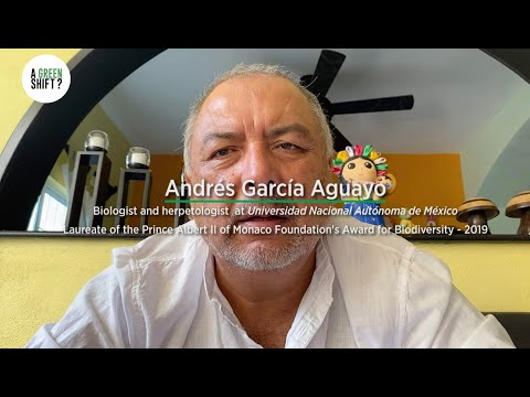 A Green Shift? - Andrés García Aguayo