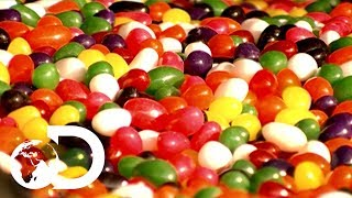 Jelly Beans | How It's Made