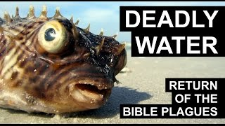 Return of the Plagues - Deadly Waters (FULL DOCUMENTARY)
