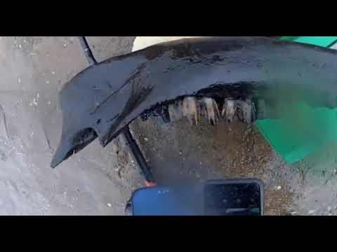 Житель Якутии во время рыбалки нашел челюсть шерстистого носорога?