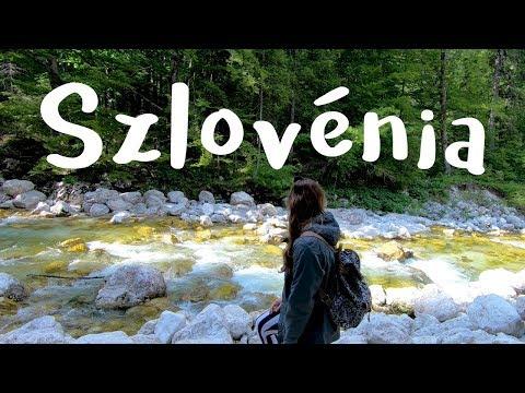 Szlovénia együttes kezelése, Miniszterelnöki Kabinetiroda