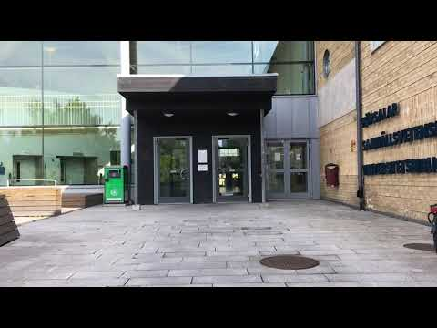 Film: To the University Library from the Medical Library