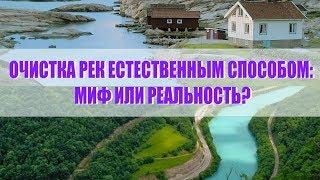 Дыхание жизни. Очистка рек естественным способом: миф или реальность?