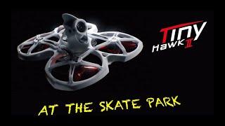 TinyHawk 2 At The Skate Park????✌️ / スケートパークに行きました。????✌️