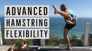 Build Extreme Active Hamstring Flexibility w/ Binds! -Bound Triangle & Bird of Paradise Progressions