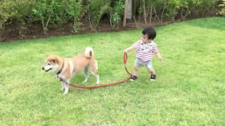 Best Boy Brings Baby on Walk