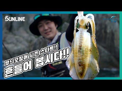 무늬오징어 캐스팅 게임 시즌 스타트!! 흔들어 봅시...