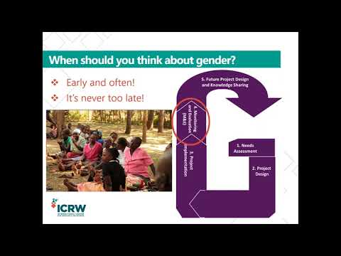 Webinar: Addressing Gender Through Integrated Population, Health, and Environment Approaches Video thumbnail