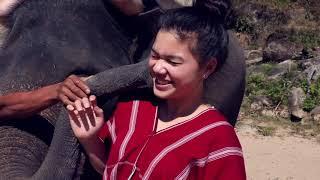 CHA CHA RAK CHANG (Cha Cha Loves Elephants)