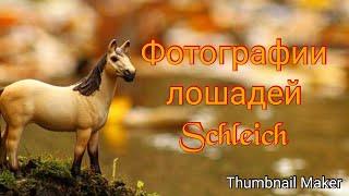 Фотографии лошадей Schleich , подборка ( загляни в описание )