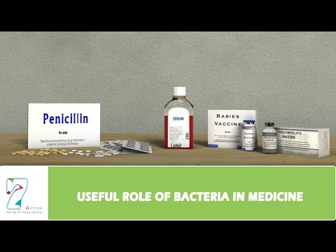 Video USEFUL ROLE OF BACTERIA IN MEDICINE