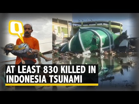 832 Dead In Indonesia Earthquake And Tsunami: Disaster Agency | The Quint