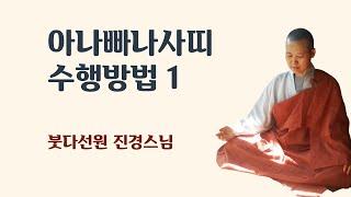 아나빠나사띠 수행방법 1 (들숨날숨에 마음챙김하는 수행방법)
