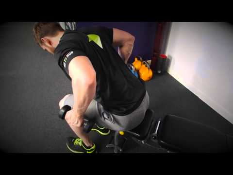 Seated Bent Over Tricep Dumbbell Kickback