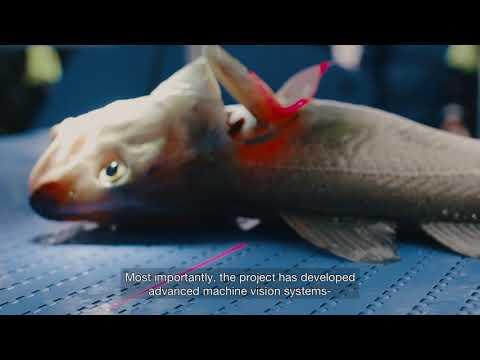 Resultater QualiFish
