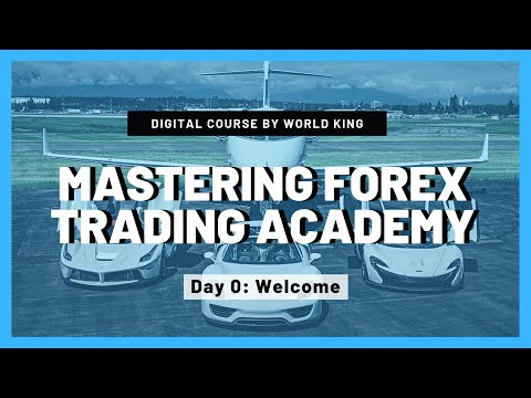 Professional Forex Trading Course For Beginners By World King ...