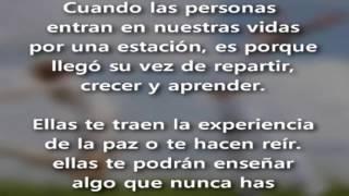 PALABRAS DE LA SEÑORA VIDA.