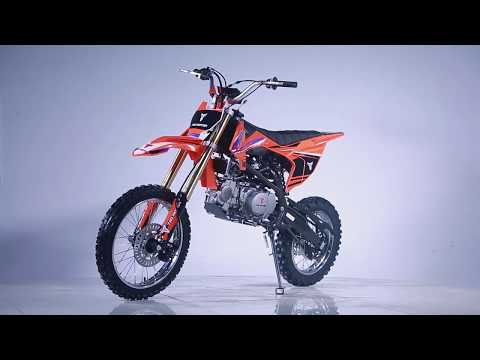 2019 Taotao USA DBX1 in Largo, Florida - Video 1
