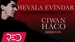 Ciwan Haco   Hevala Evîndar【Remastered】 (Official Audio)