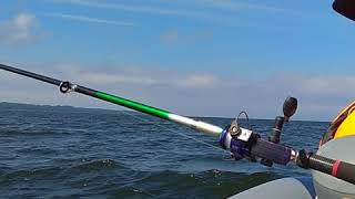 Лодка Флагман DK 350