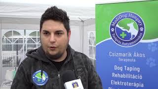 TV Budakalász / Budakalász Ma / 2018.04.16.