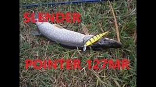Lucky craft pointer slender 127 mr